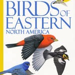 GUIDE NATIONAL GEOGRAPHIC FIELD GUIDE TO THE BIRDS OF EASTERN NORTH AMERICA