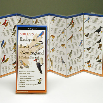 GUIDE SIBLEY'S BACKYARD BIRDS OF THE NORTHEAST FOLDING GUIDE