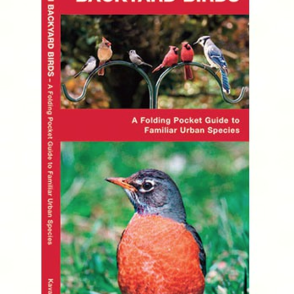 GUIDE POCKET NATURALIST: EASTERN BACKYARD BIRDS FOLDING GUIDE