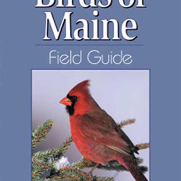 GUIDE BIRDS OF MAINE FIELD GUIDE  BY: STAN TEKIELA
