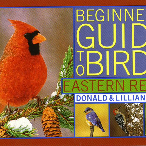 GUIDE STOKES BEGINNER'S GUIDE TO BIRDS EASTERN REGION