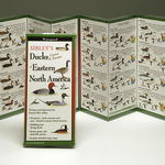 GUIDE SIBLEY'S DUCKS GEESE AND SWANS OF EASTERN NORTH AMERICA FOLDING GUIDE