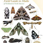 GUIDE PETERSON FIELD GUIDE TO MOTHS N.E. NORTH AMERICA