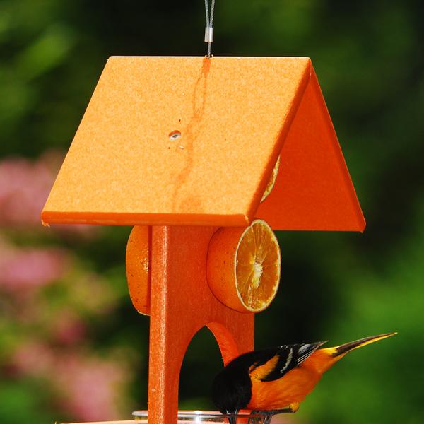 FEEDERS SONGBIRD ESSENTIALS RECYCLED ORIOLE FEEDER