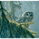 PUZZLES COBBLE HILL SPOTTED OWL MOSSY BRANCHES PUZZLE 500PC