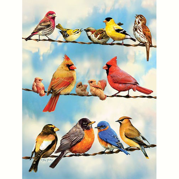 PUZZLES COBBLE HILL BIRDS ON A WIRE PUZZLE 500PC