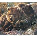 KIDS COBBLE HILL GRIZZLY FAMILY- FAMILY PUZZLE 350 PC.