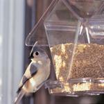 FEEDERS ASPECTS WINDOW CAFE HOPPER FEEDER