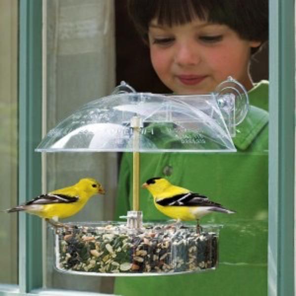 FEEDERS DROLL YANKEES WINDOW BIRDFEEDER