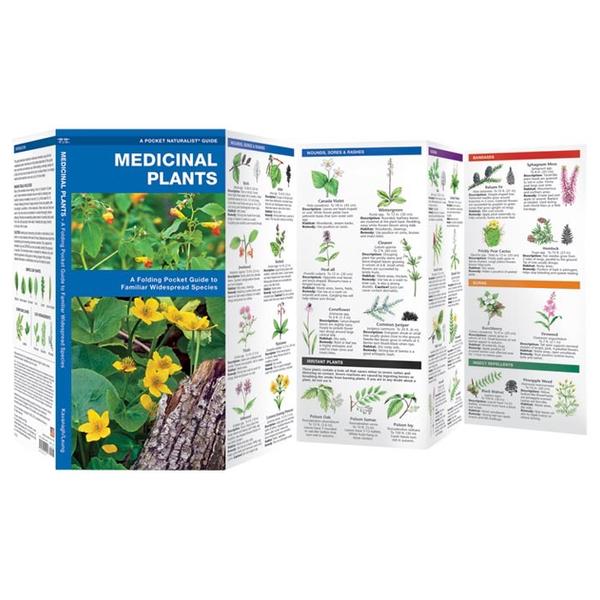 GUIDE POCKET NATURALIST: MEDICINAL PLANTS FOLDING GUIDE