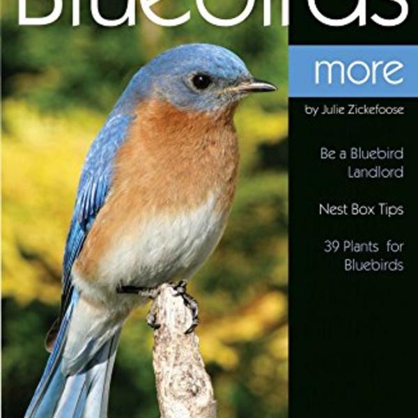 BOOKS/GUIDES BIRD WATCHER'S DIGEST: ENJOYING BLUEBIRDS MORE
