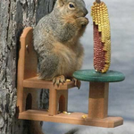 FEEDERS SONGBIRD ESSENTIALS Recycled Poly Squirrel Feeder Table & Chair