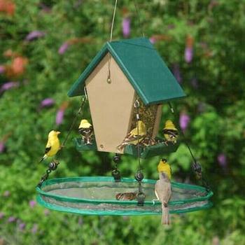 """FEEDERS SONGBIRD ESSENTIALS 16""""  SEED HOOP"""