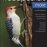 GUIDE BIRD WATCHER'S DIGEST: ENJOYING WOODPECKERS MORE