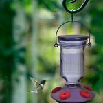 FEEDERS PERKY PET LAVENDER FIELD TOP-FILL HUMMINGBIRD FEEDER