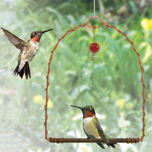 FEEDERS SONGBIRD ESSENTIALS COPPER HUMMINGBIRD SWING