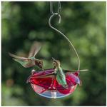 FEEDERS DROLL YANKEES RUBY SIPPER HANGING HUMMINGBIRD FEEDER
