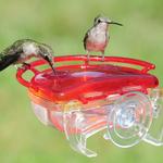 FEEDERS ASPECTS HUMMINGBIRD GEM WINDOW FEEDER