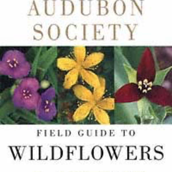 BOOKS/GUIDES NATIONAL AUDUBON SOCIETY FIELD GUIDE TO WILDFLOWERS