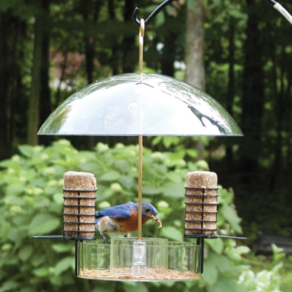 FEEDERS BIRDS CHOICE SUPPER DOME SEED SUET& MEALWORM FEEDER