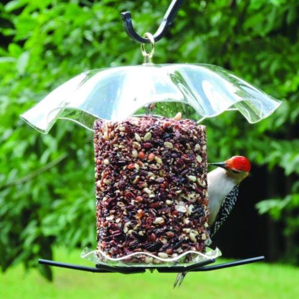 FEEDERS BIRDS CHOICE SEED CYLINDER FEEDER CLEAR TOP & BOTTOM W/PERCHES