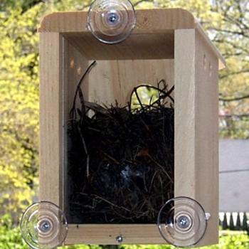HOUSES COVESIDE WINDOW NEST BOX BIRD HOUSE 10010