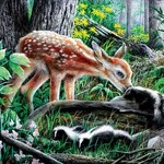 PUZZLES SUNS OUT PUZZLES FRIENDS OF THE FOREST 500 PC
