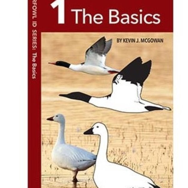 GUIDE CORNELL WATERFOWL ID SERIES 1: THE BASICS FOLDING GUIDE