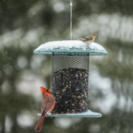FEEDERS BIRDS CHOICE 5QT. MESH SUNFLOWER FEEDER GREEN