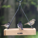 """FEEDERS BIRDS CHOICE 11""""X10"""" CEDAR HANGING TRAY FEEDER"""