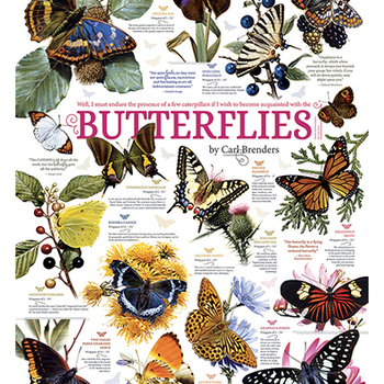 PUZZLES COBBLE HILL BUTTERFLY COLLECTION PUZZLE 1000 PC.