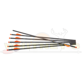 Centerpoint CenterPoint CP 400 Select Arrows-AXCCA20TPK