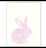 Hip Baby Cards - Blank
