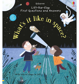 Usborne Lift-the-Flap What Is it Like in Space?