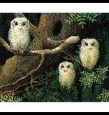 Random House Owl Babies