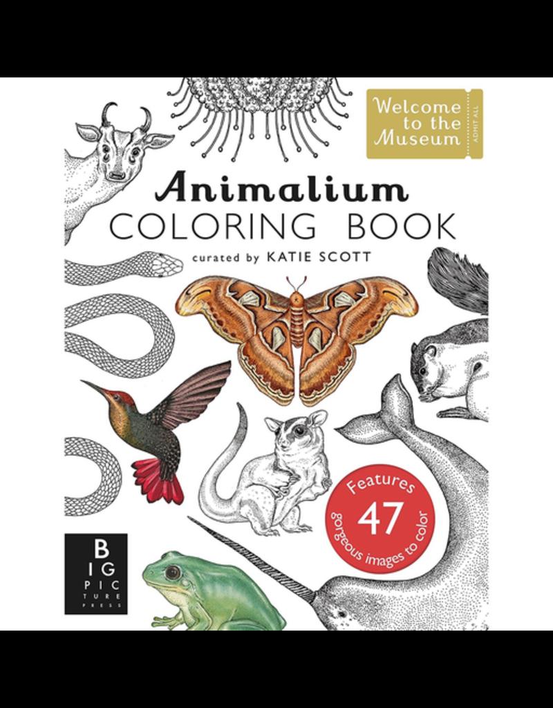 Random House Animalium Colouring Book