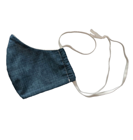 Adult Fabric Mask Blue