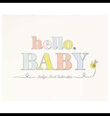 Hello Baby First Year Calendar
