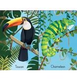 Usborne Snap Cards: Jungle