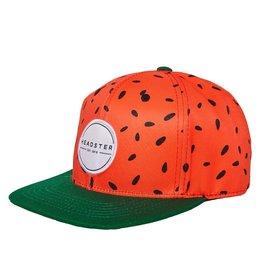 Headster Wild Melon Baseball Hat
