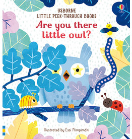 Usborne Are You There Little Owl?