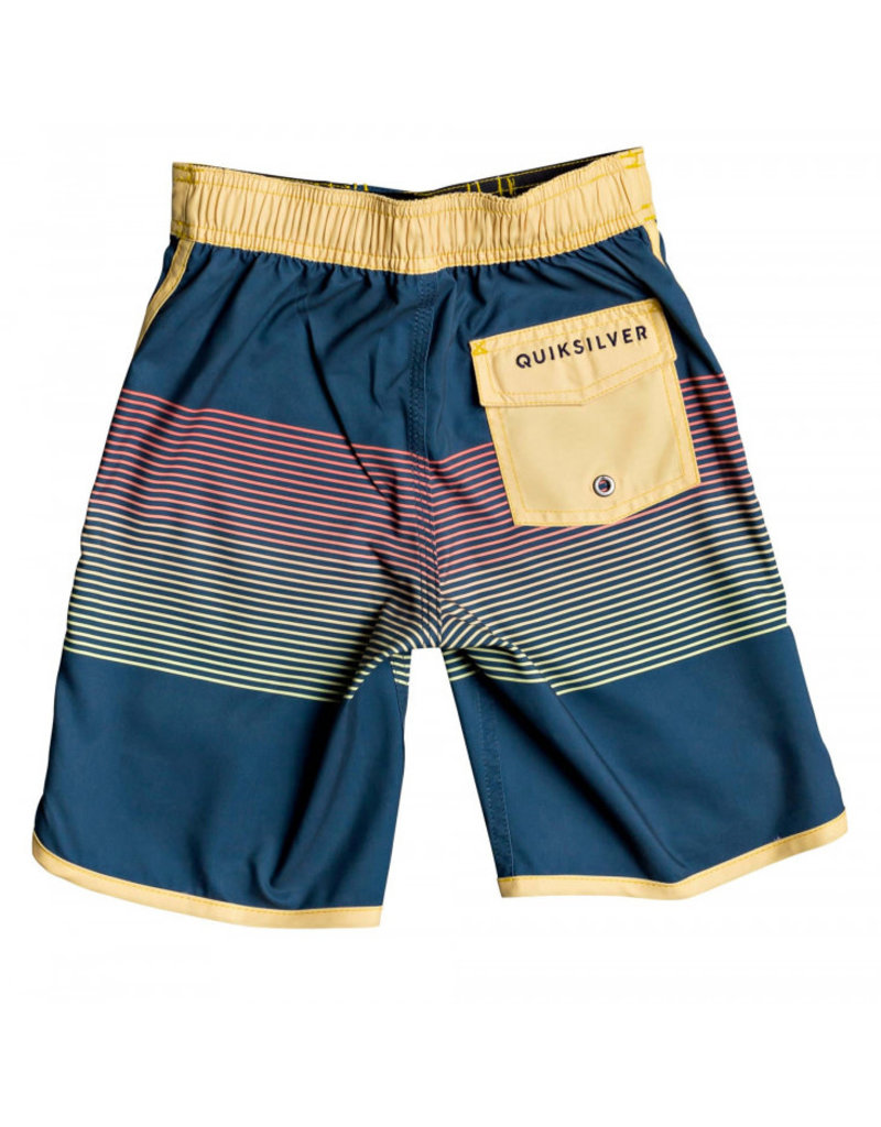 """Quiksilver Everyday Grass Roots 14"""" Boardshorts"""