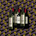 The Wine Bin STAFF 6 • JUNE • The Wine Bin