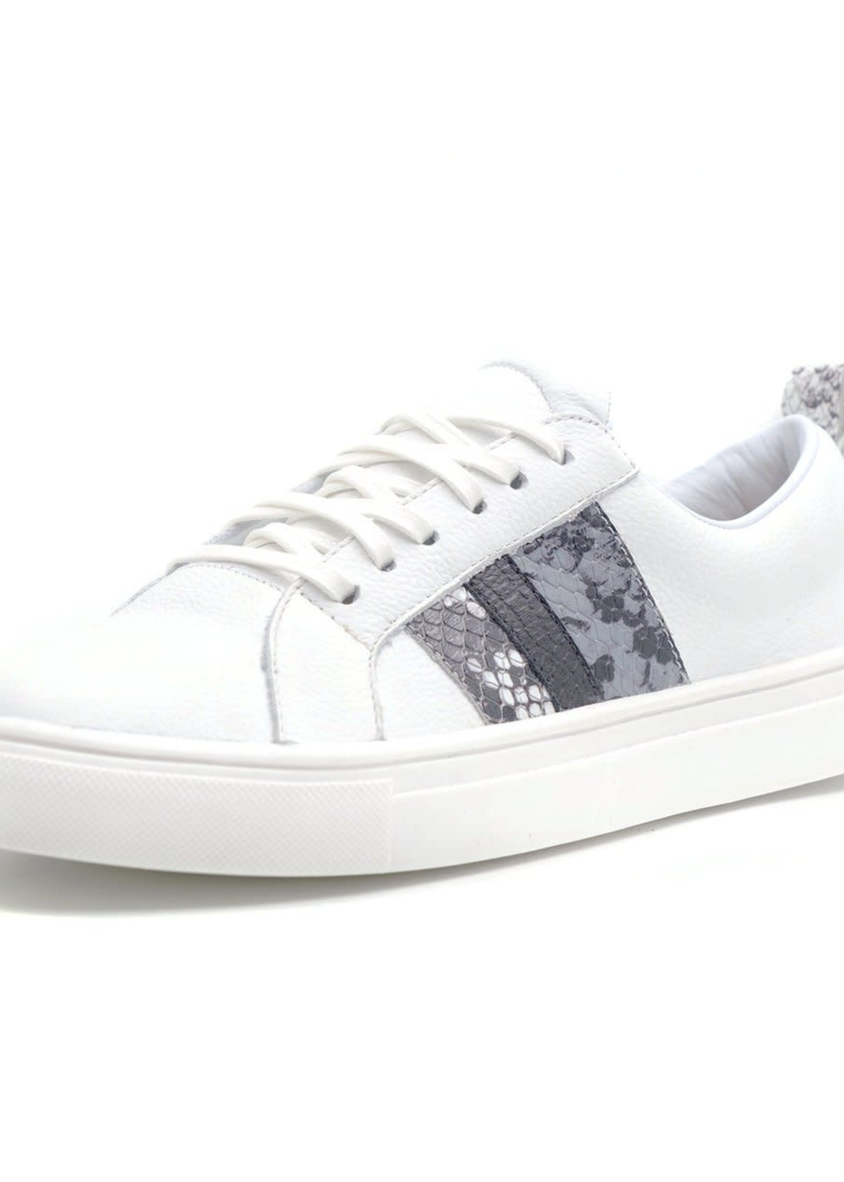 Elitaire Boutique Bristol Sneaker with Snakeskin