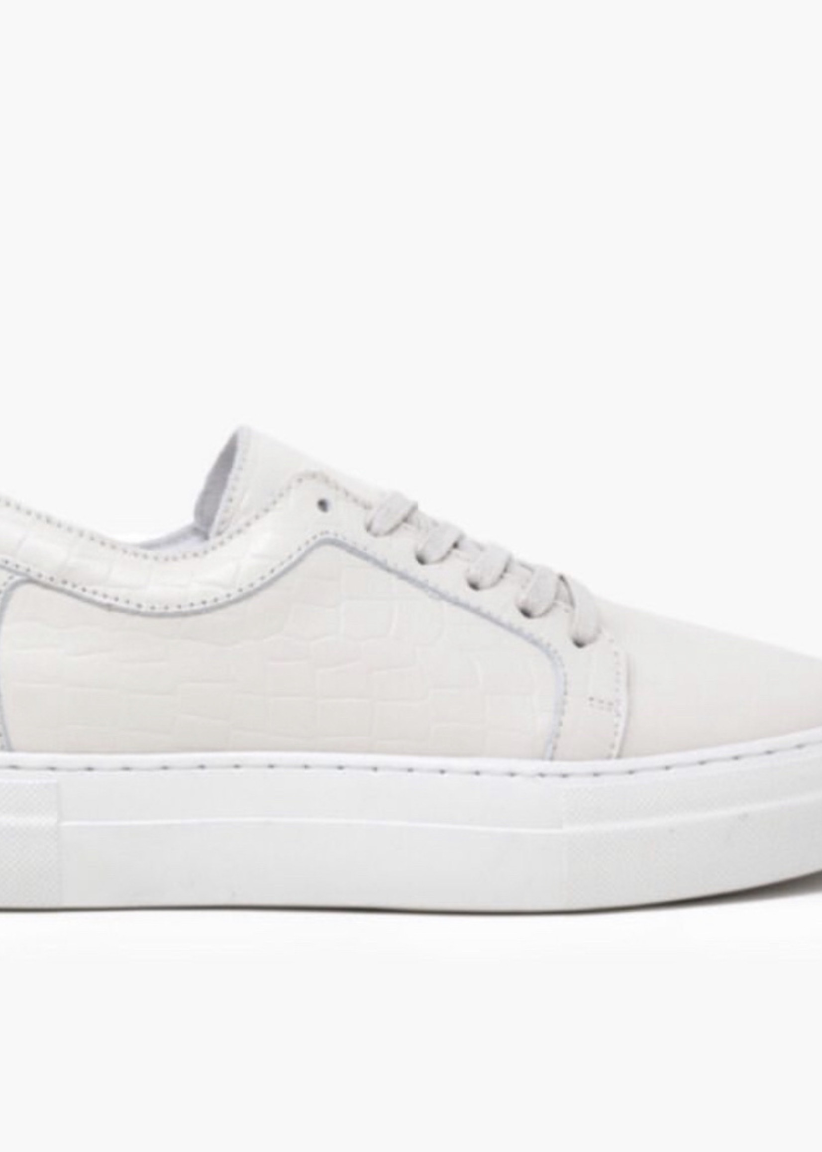 Elitaire Boutique Marissa Bone Croco Sneaker