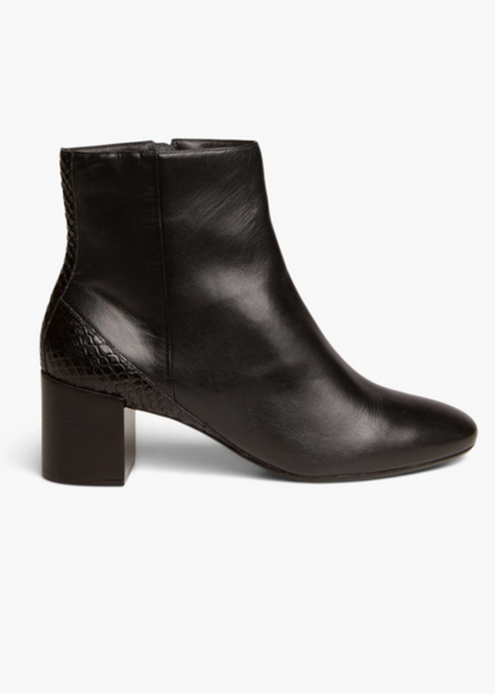 Elitaire Boutique Dotti Ankle Boot in Black