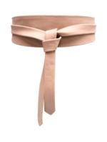 Elitaire Boutique Wrap Belt - Blush