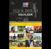 EQUILIBRIUM Equilizer