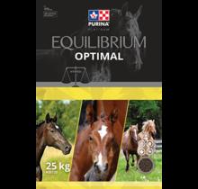 EQUILIBRIUM Optimal