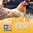 Cargill-Purina 6490 - GOLD'N Layena «O» concassé avec graine de lin